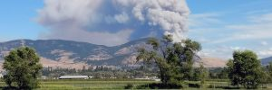 Expert Q&A: Wildfire season in the Okanagan Valley