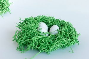 Spring can be a time for 'green eggs and chocolate,' say UBCO experts